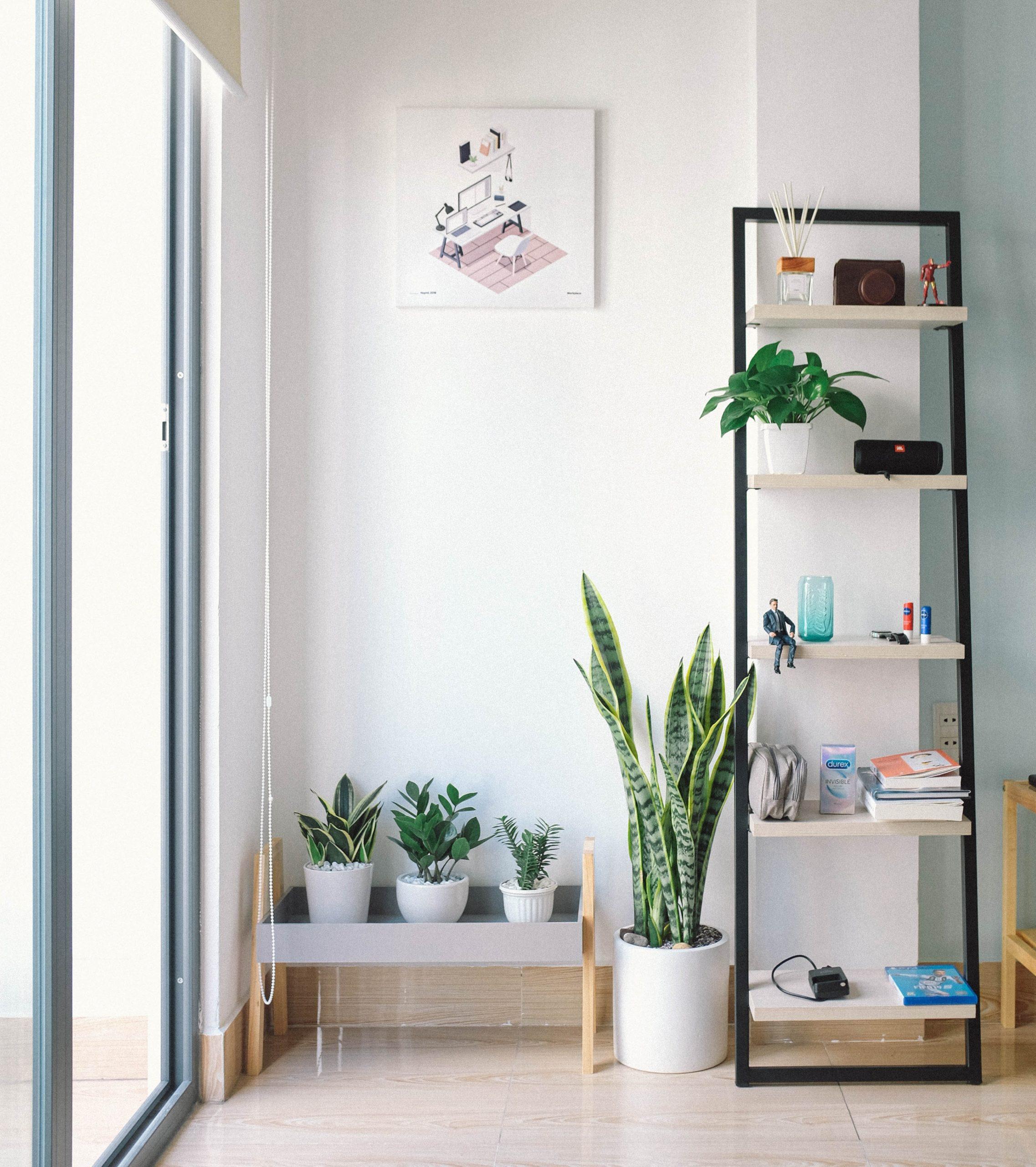 De beste Instagram-accounts voor interieur-inspiratie